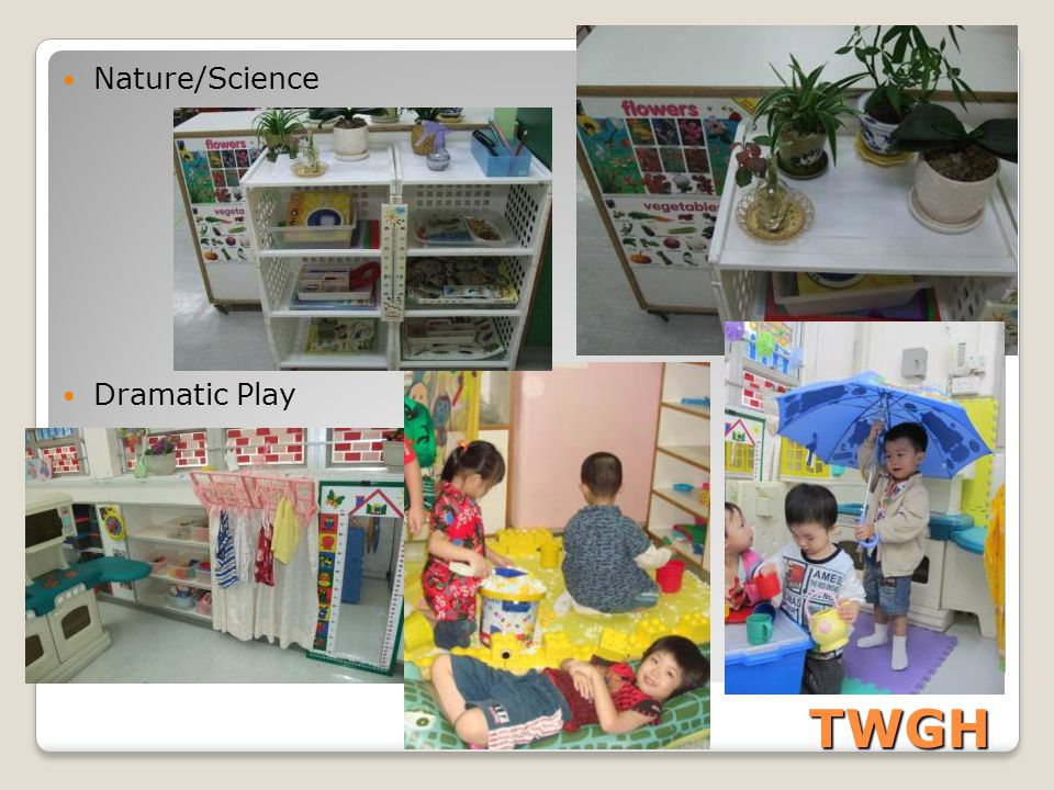 Nature/Science Dramatic Play TWGH