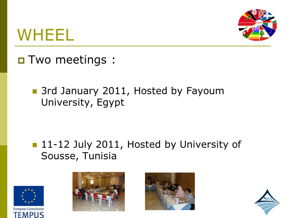 WHEEL Two meetings : 3rd January 2011, Hosted by Fayoum University, Egypt.