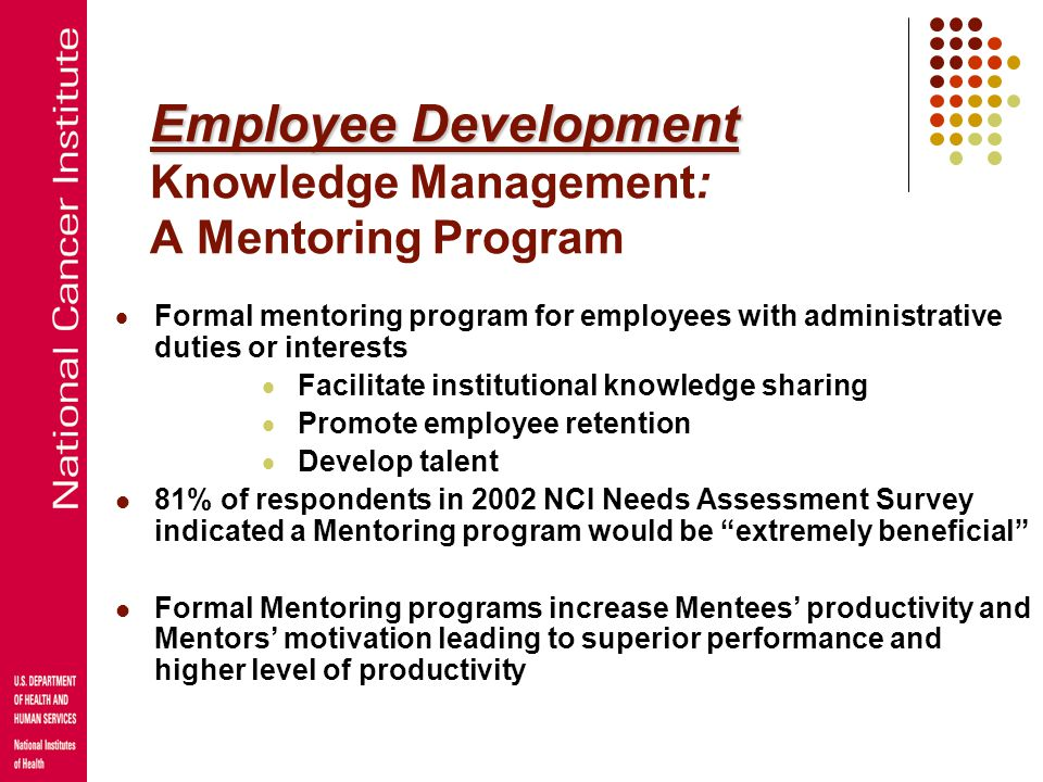 Employee Development Knowledge Management: A Mentoring Program