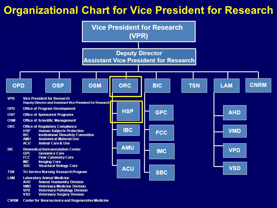 Organizational Chart for Vice President for Research