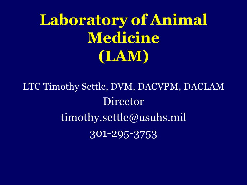 Laboratory of Animal Medicine (LAM)