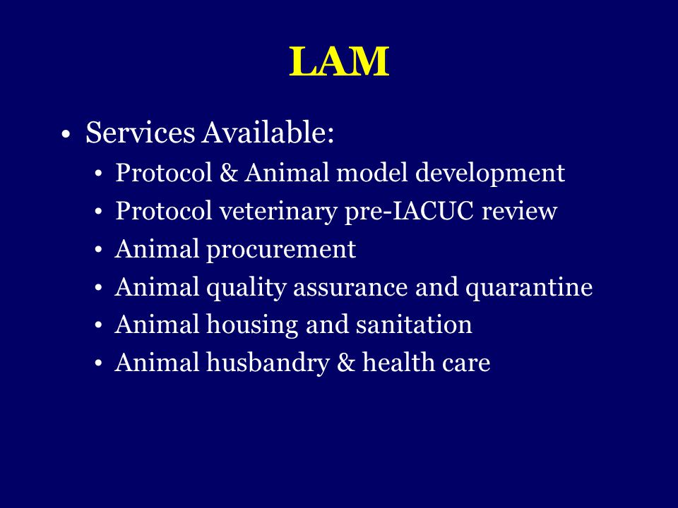 LAM Services Available: Protocol & Animal model development