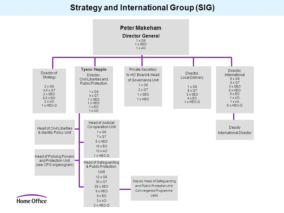 Strategy and International Group (SIG)