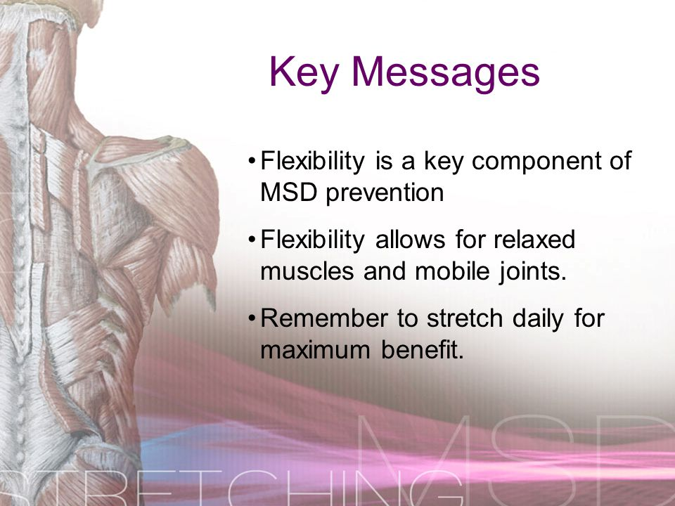 Key Messages Flexibility is a key component of MSD prevention