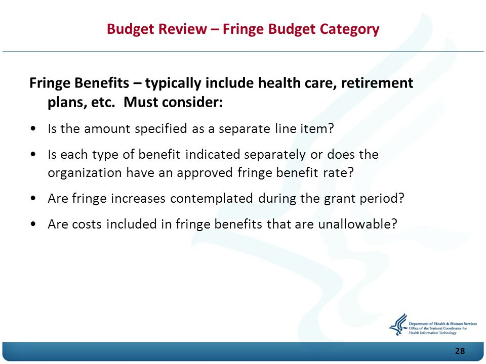 Budget Review – Fringe Budget Category