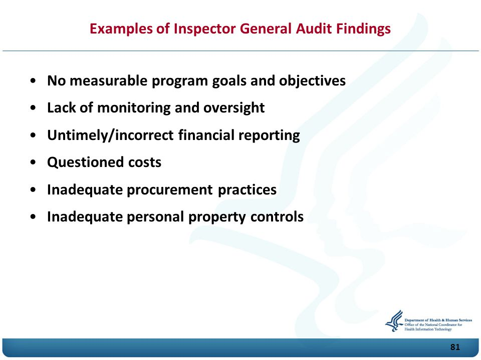 Examples of Inspector General Audit Findings