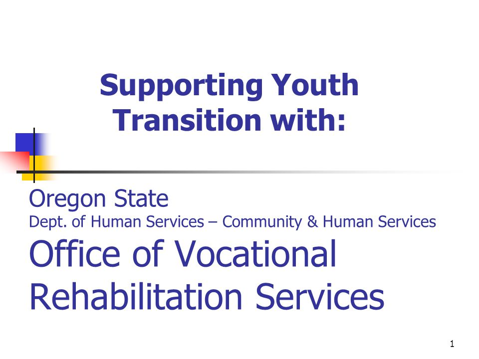Supporting Youth Transition with: