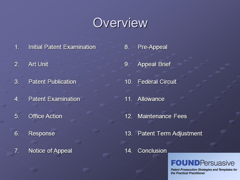 Overview 1. Initial Patent Examination 2. Art Unit