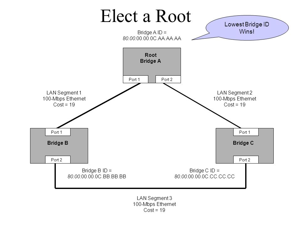 Elect a Root Lowest Bridge ID Wins!
