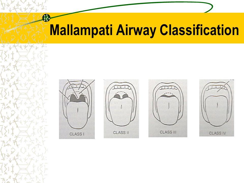 Mallampati Airway Classification