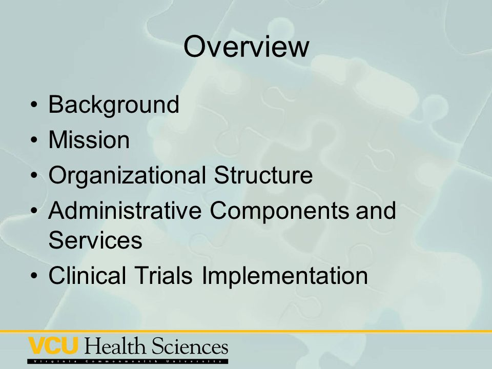 Overview Background Mission Organizational Structure