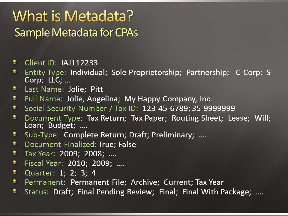 What is Metadata Sample Metadata for CPAs