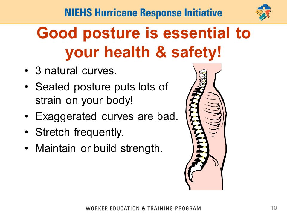 Good posture is essential to your health & safety!