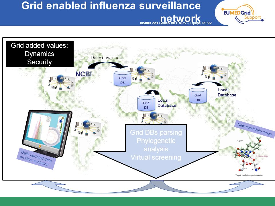 Grid enabled influenza surveillance network