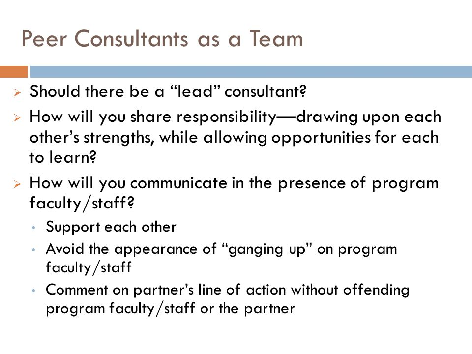 Peer Consultants as a Team