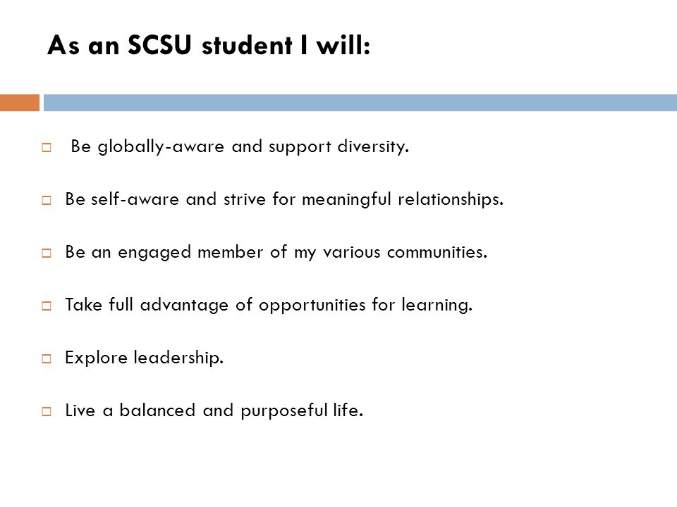 As an SCSU student I will: