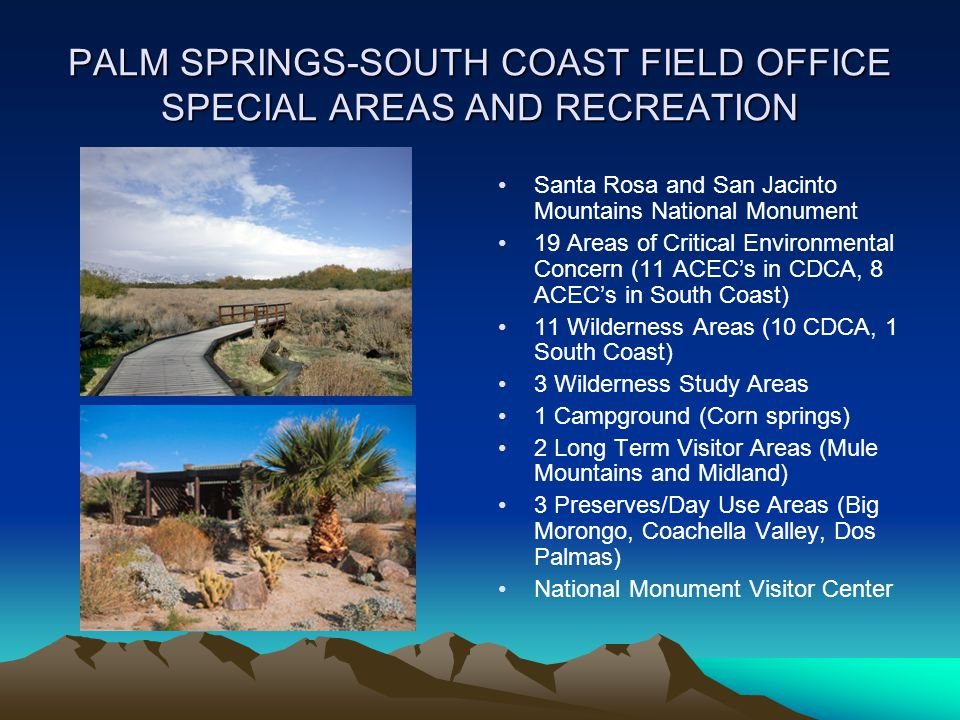 PALM SPRINGS-SOUTH COAST FIELD OFFICE SPECIAL AREAS AND RECREATION