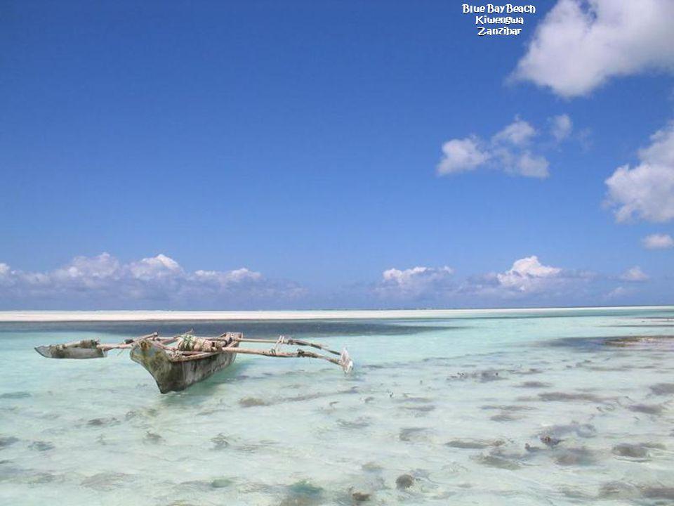 Blue Bay Beach Kiwengwa Zanzibar