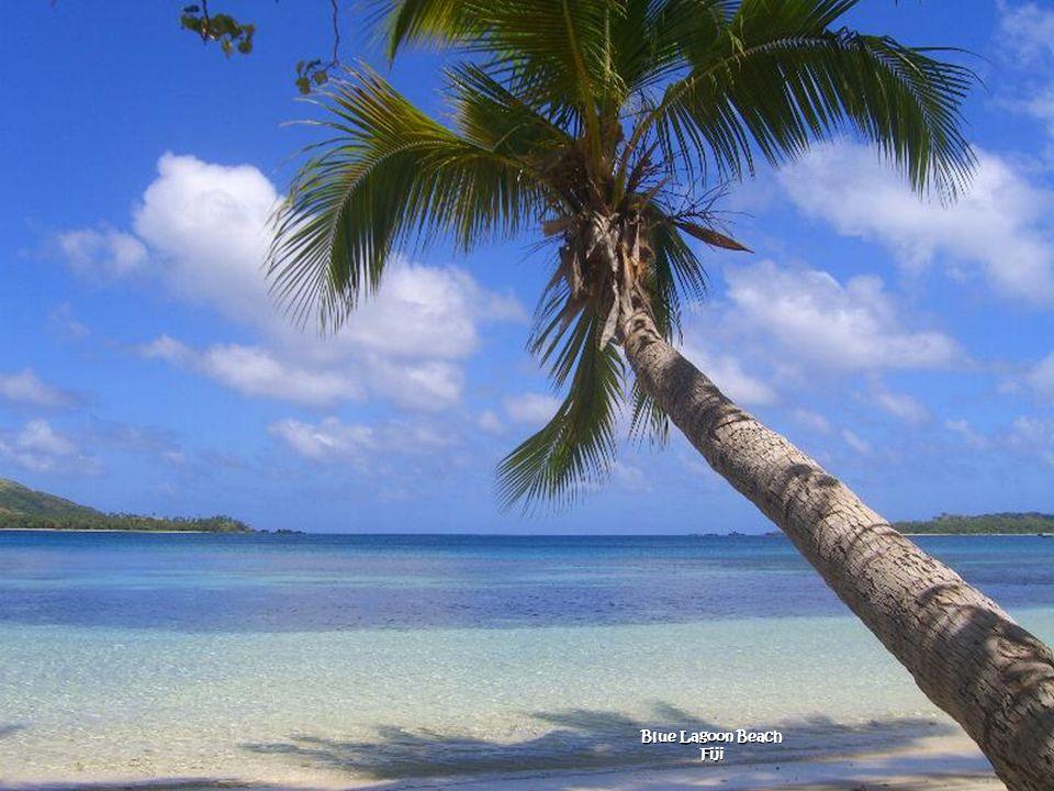 Blue Lagoon Beach Fiji