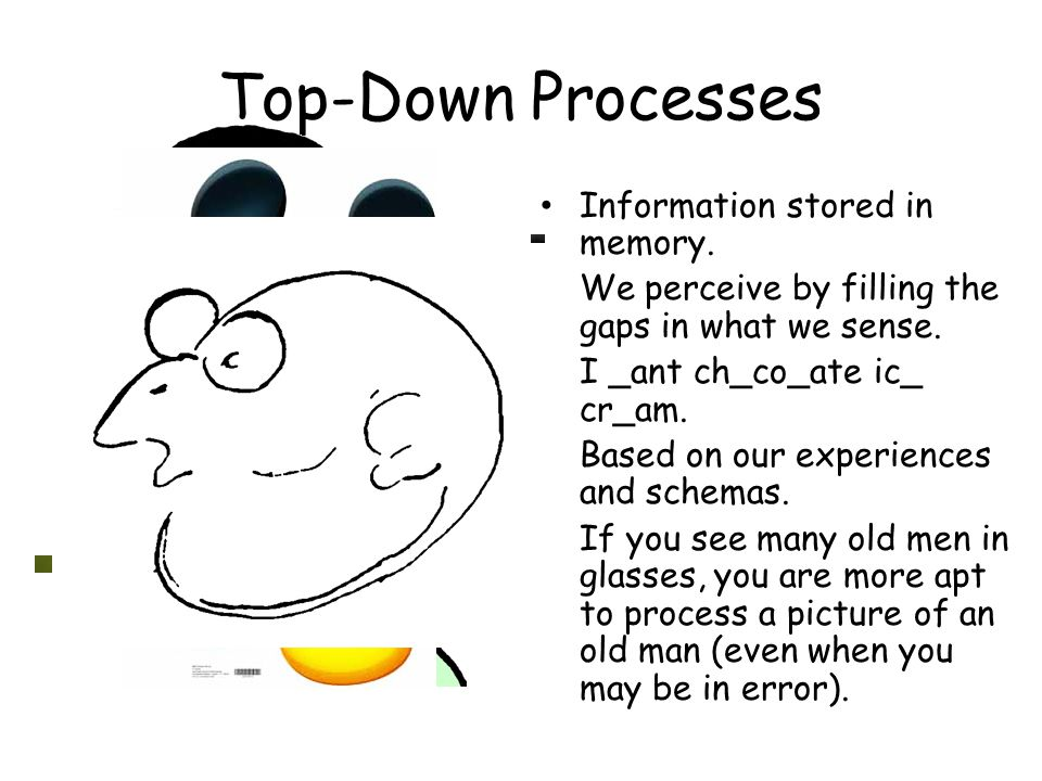 Top-Down Processes Information stored in memory.