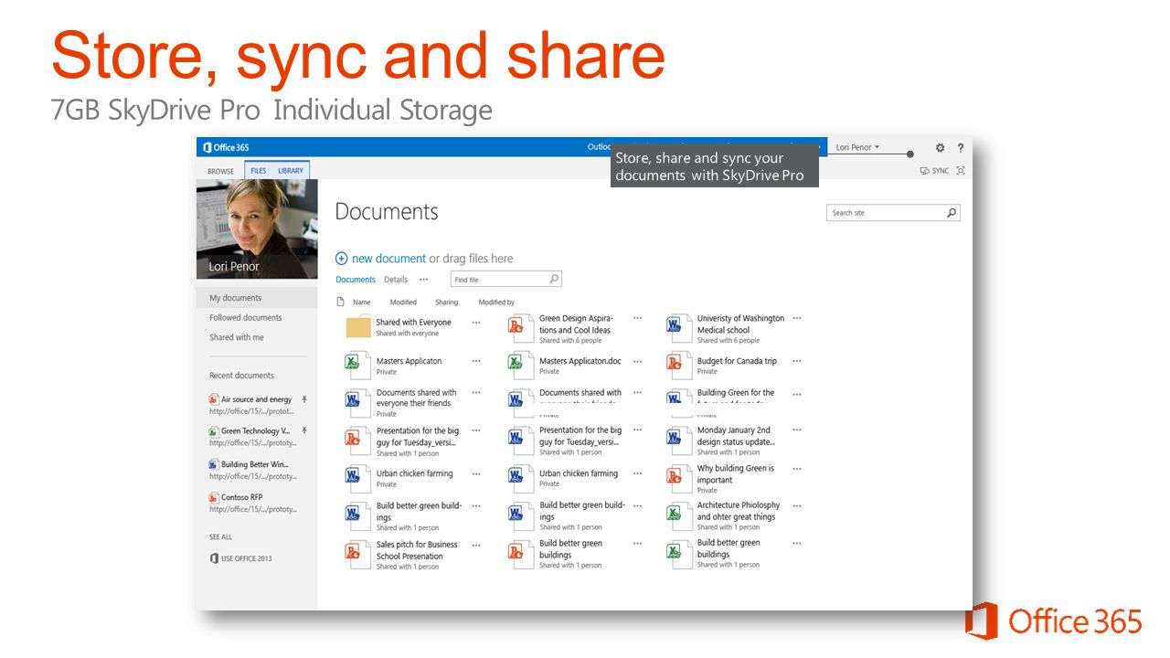 Store, sync and share 7GB SkyDrive Pro Individual Storage