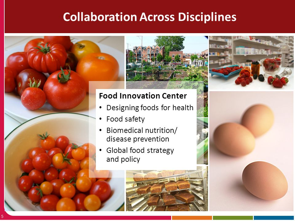 Collaboration Across Disciplines