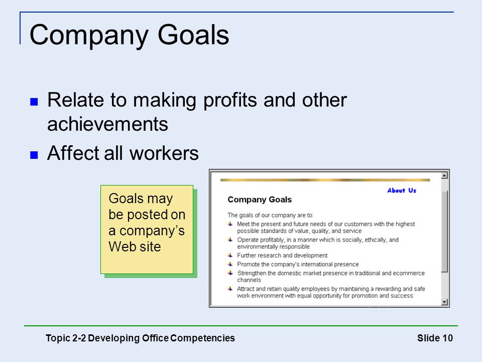 Company Goals Relate to making profits and other achievements