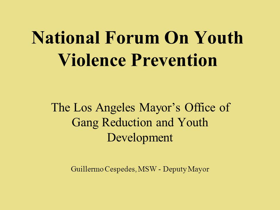 National Forum On Youth Violence Prevention