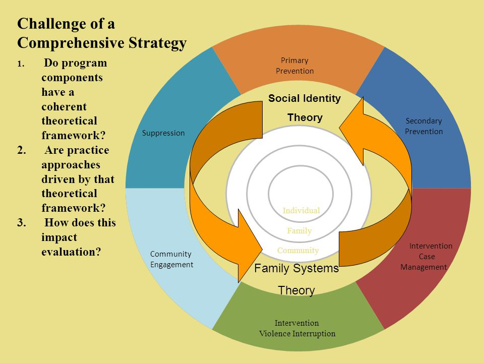 Challenge of a Comprehensive Strategy