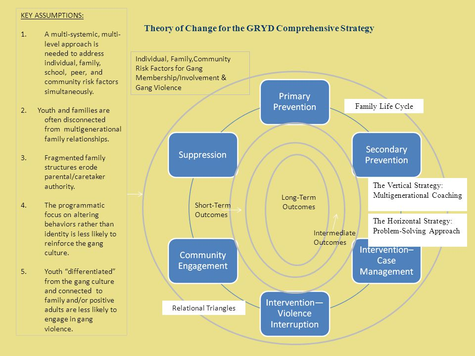 Theory of Change for the GRYD Comprehensive Strategy