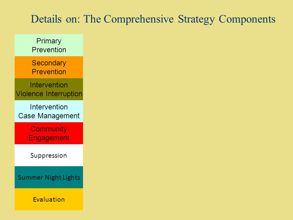 Details on: The Comprehensive Strategy Components