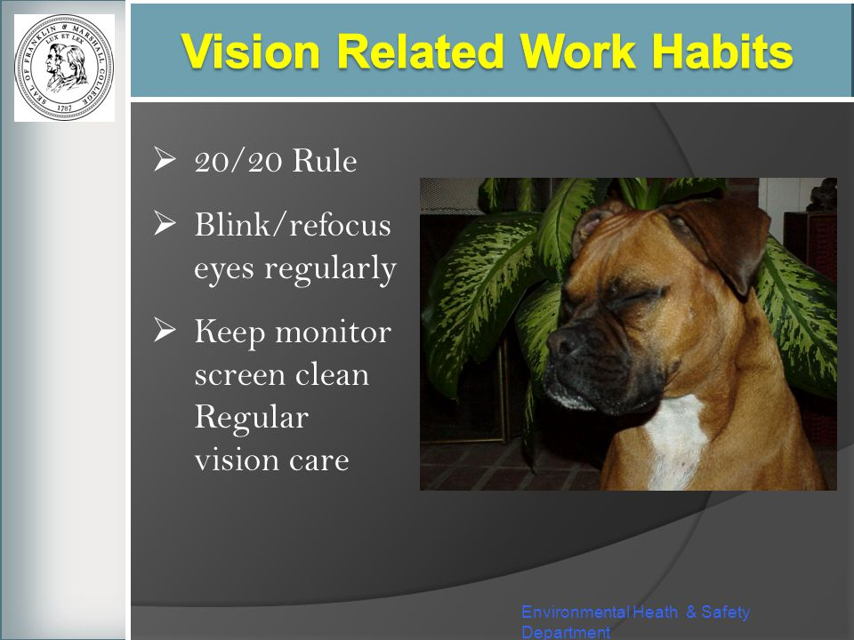 Vision Related Work Habits