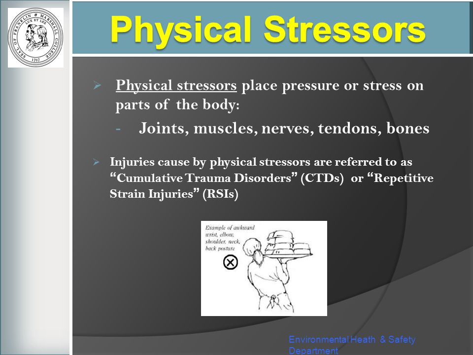 Physical Stressors Joints, muscles, nerves, tendons, bones