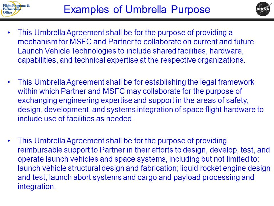 Examples of Umbrella Purpose