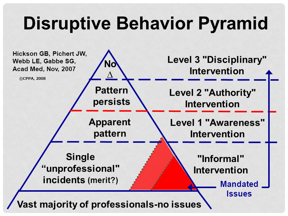 Disruptive Behavior Pyramid