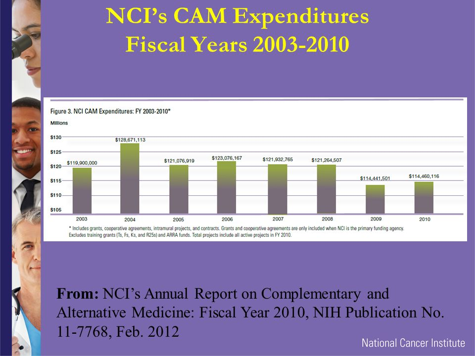 NCI's CAM Expenditures Fiscal Years 2003-2010