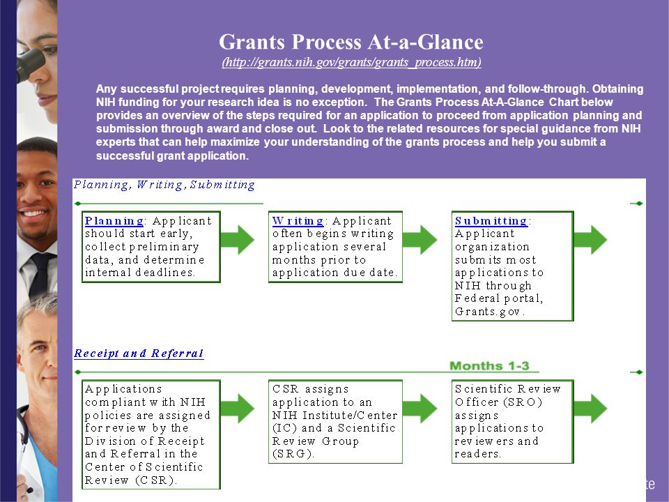 Grants Process At-a-Glance (http://grants. nih