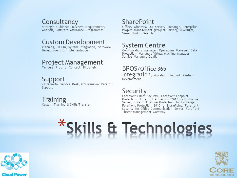 Consultancy Strategic Guidance, Business Requirements Analysis, Software Assurance Programmes