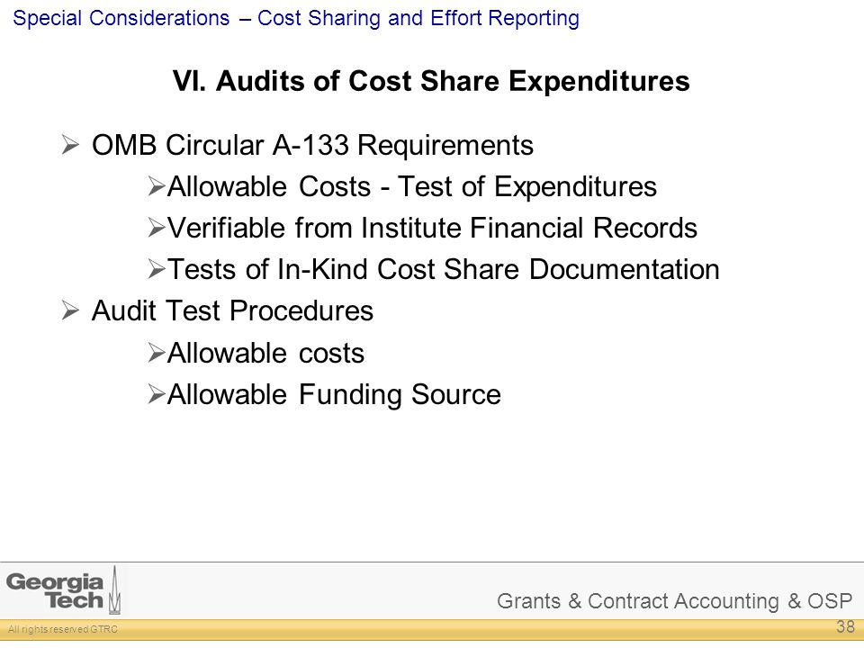 VI. Audits of Cost Share Expenditures