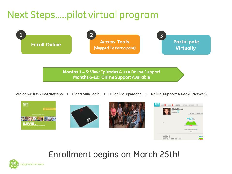Next Steps…..pilot virtual program