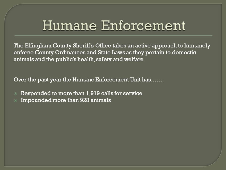 Humane Enforcement