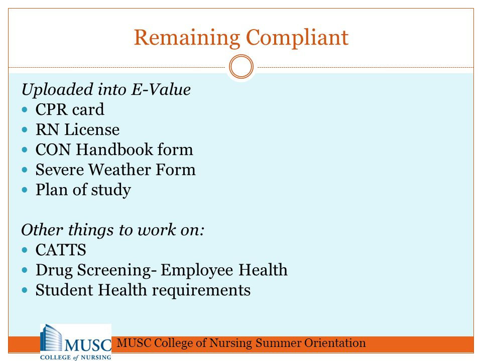 MUSC College of Nursing Summer Orientation