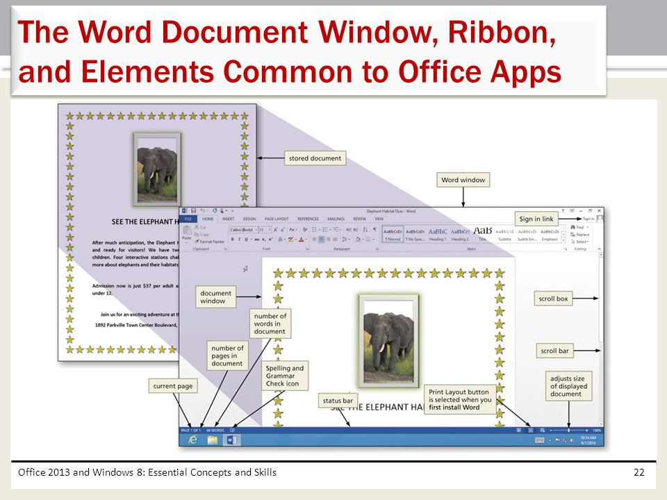 The Word Document Window, Ribbon, and Elements Common to Office Apps