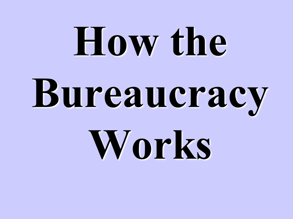 How the Bureaucracy Works