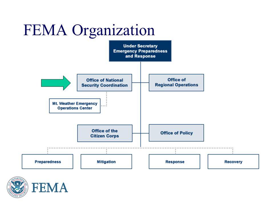 FEMA Organization