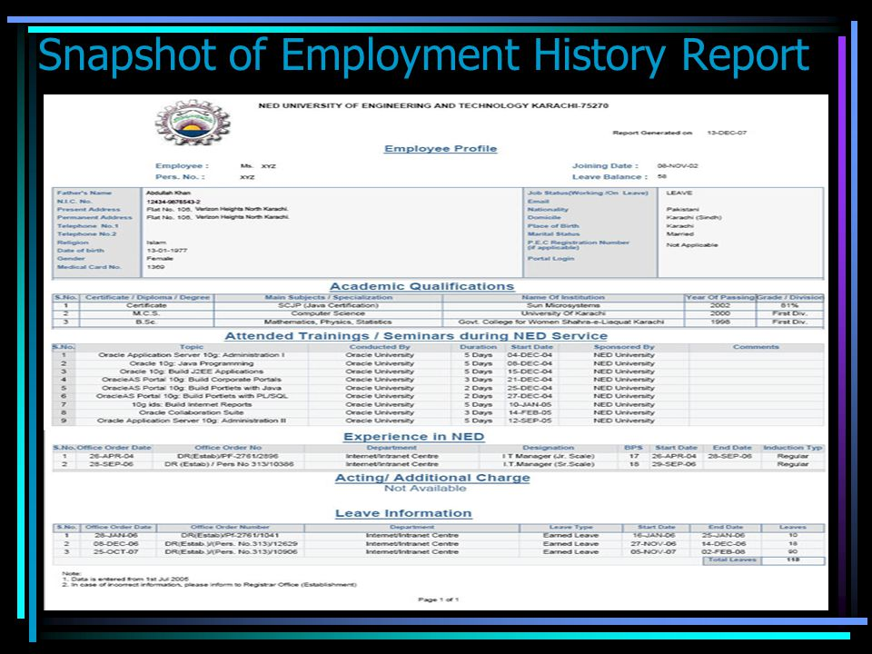 Snapshot of Employment History Report