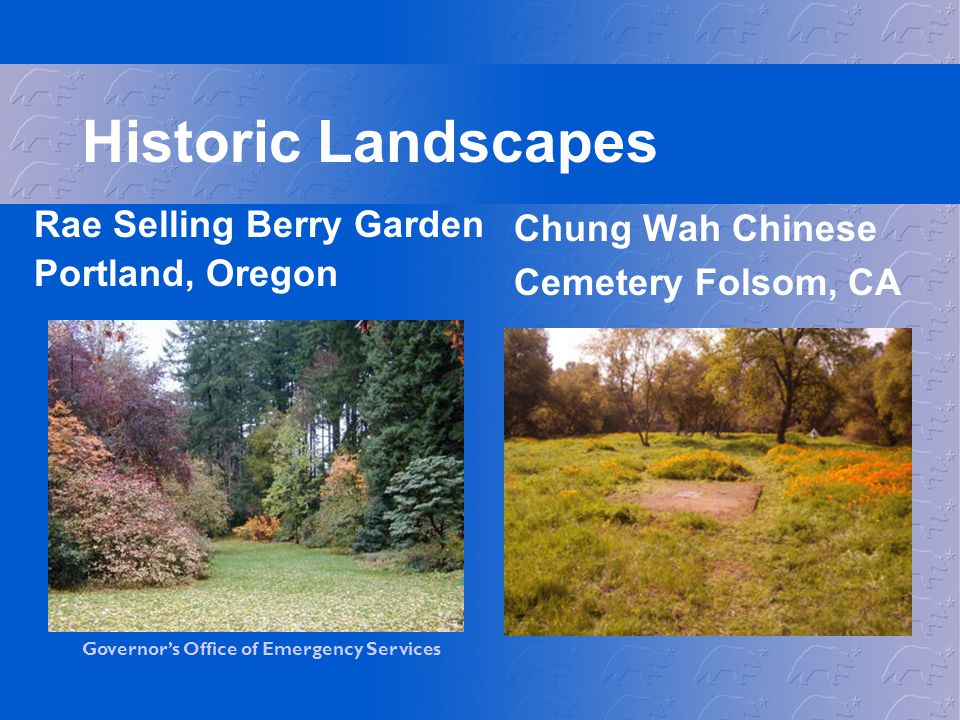 Historic Landscapes Rae Selling Berry Garden Portland, Oregon