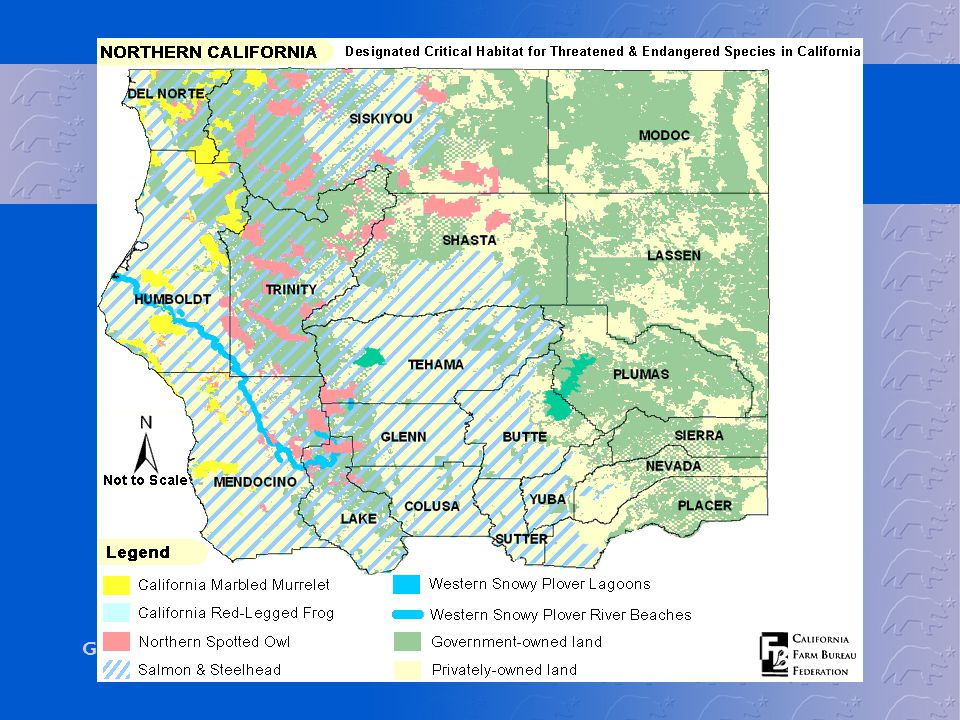 To show you how much of California is designated critical habitat, we have maps from the California Farm Bureau's website that shows the extent of critical habitats in the state. Some of these habitats have since been vacated, however some new ones have been added.