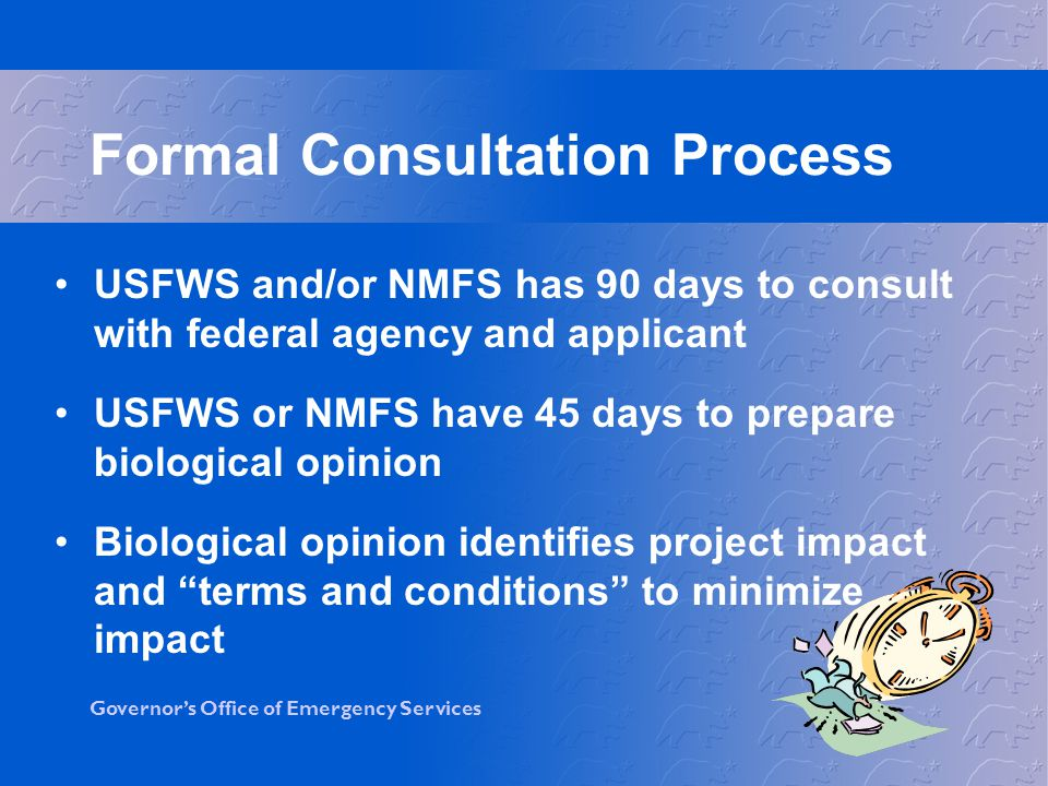 Formal Consultation Process