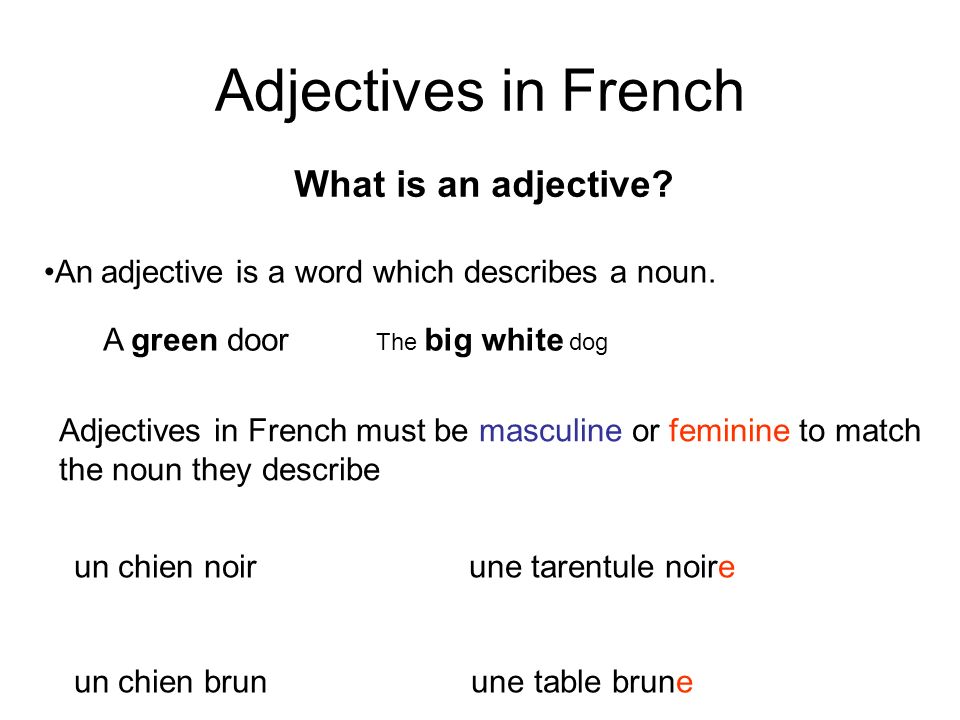 Adjectives in French What is an adjective
